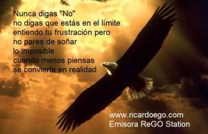 01aguila_volando11