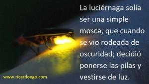 Luci+®rnaga
