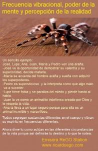 ara+¦as-19-600x337