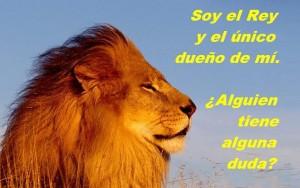 leon-para-como-hacerse-respetar